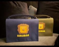 台灣製高級懷舊斜孭琴袋