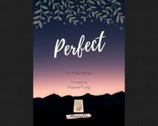 Perfect - Ed Sheeran (pdf.file)